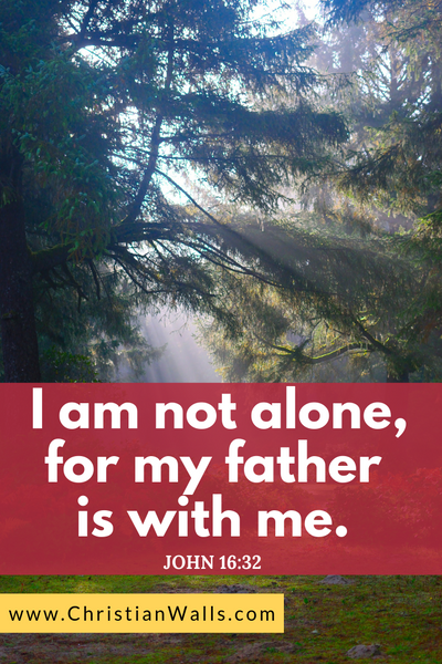 John 16 32 I am not alone for my father is with me picture print poster bible verse