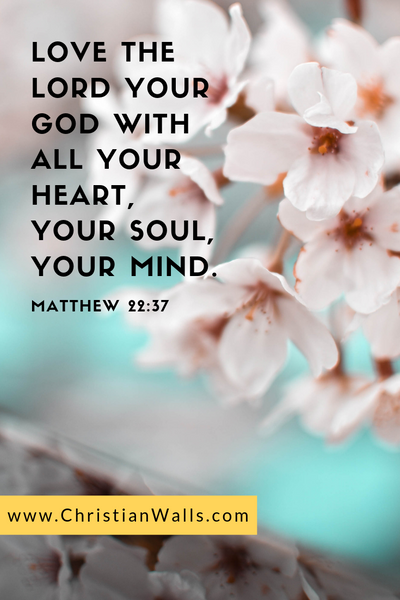 Matthew 22 37 Love the Lord your God with all your heart, your soul, your mind picture print poster bible verse