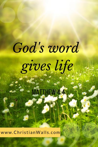 Matthew 4 4 God's word gives life picture print poster bible verse