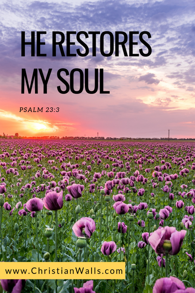 Psalm 23 3 He restores my soul picture print poster bible verse
