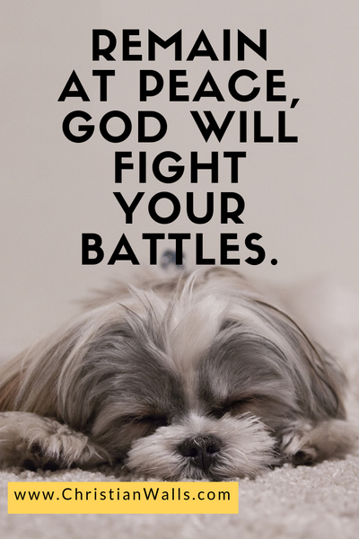 Remain at peace, God will fight your battles picture print poster christian quote