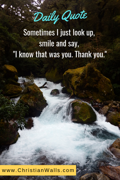 Sometimes I just look up, smile and say I know that was you Thank you picture print poster christian quote