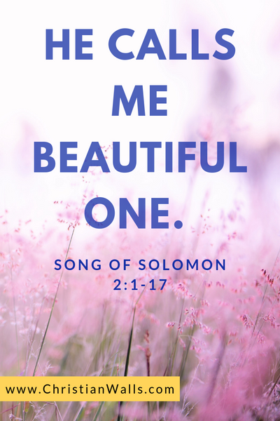 Song of Solomon 2 1-17 He calls me beautiful one picture print poster bible verse