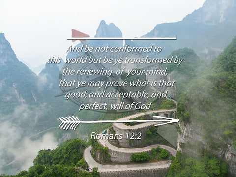 Image of Romans 12:2 #6 KJV Do not conform to the World Bible Verse Wall Art Canvas