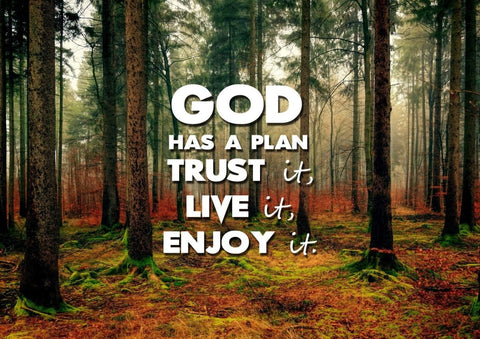 Image of God has a plan- Trust it, Live it, Enjoy It Christian Quotes Wall Art Canvas