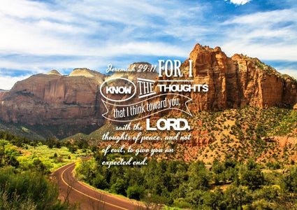 Jeremiah 29:11 KJV #3 Bible Verse Canvas Wall Art