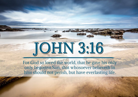 John 3:16 KJV #29 Bible Verse Canvas Wall Art