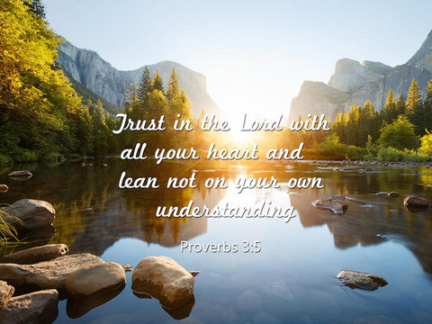 Proverbs 3:5 #5 NIV Trust in the Lord Bible Verse Wall Art Canvas