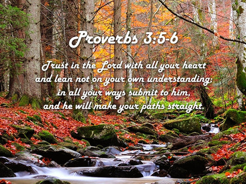 Proverbs 3:5-6 #27 'Trust in the Lord with all your Heart' Bible Verse Canvas Wall Art