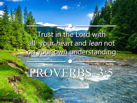 Proverbs 3:5 #6 NIV Trust in the Lord Bible Verse Wall Art Canvas