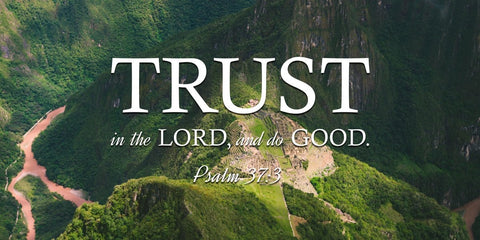 Psalm 37:3 Trust in the Lord & Do Good - Bible Verse Wall Art Canvas