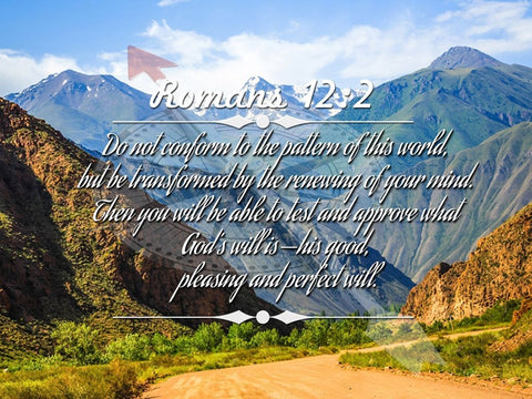 Image of Romans 12:2 #9 NIV Do not conform to the pattern Bible Verse Wall Art Canvas