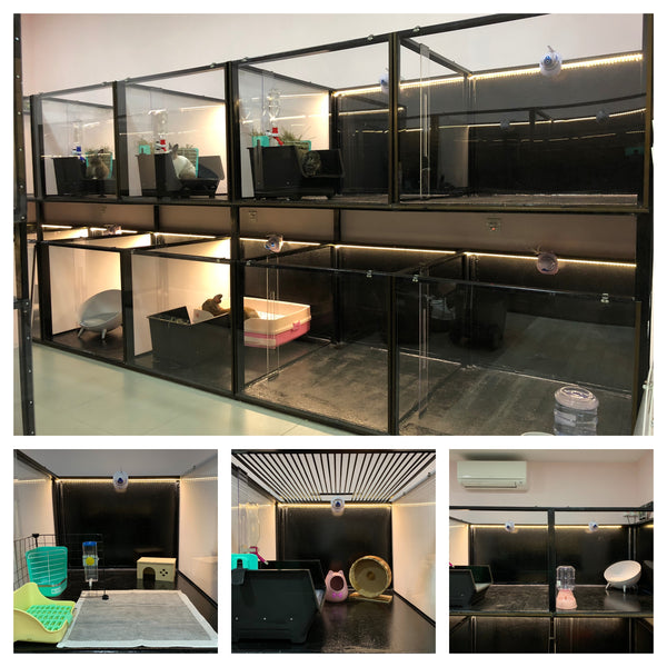 Chinchilla, Guinea Pig, Hamster, Rabbits. Modular pens to fit your pets needs. With 24/7 CCTV and air-conditioning. We Also Provide Brushing, Cleaning and Trimming Services. Grooming Services available. The Fluffy Hut