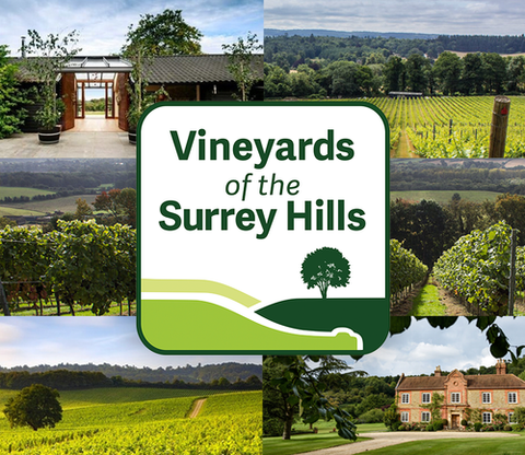 Vineyards of the Surrey Hills