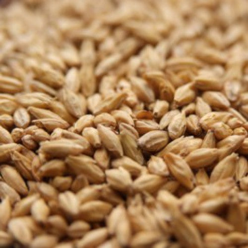 Acidulated Malt /Oz