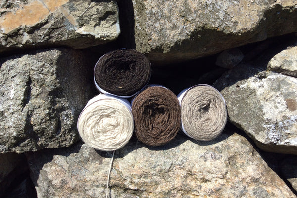 Double Knit Organic Undyed Yarn - Uradale Yarns