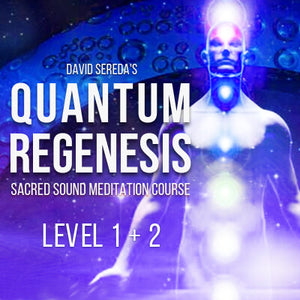 Quantum Regenesis Meditation Course - Year 1 & 2 - Full Course Download