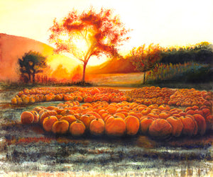 Harvest Sunset By: Teddie Oatey