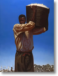 Cotton - Kadir Nelson