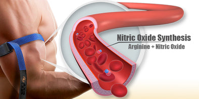 Why Some Pump Products Fail Nitric Oxide Synthesis Arginine Axis Labs Athletic Majority Blog