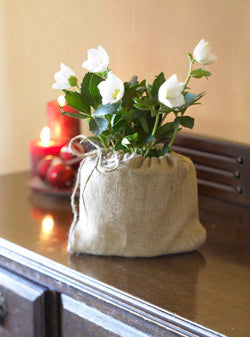 "5"" Burlap Christmas Roses Packed 12 $2.25"
