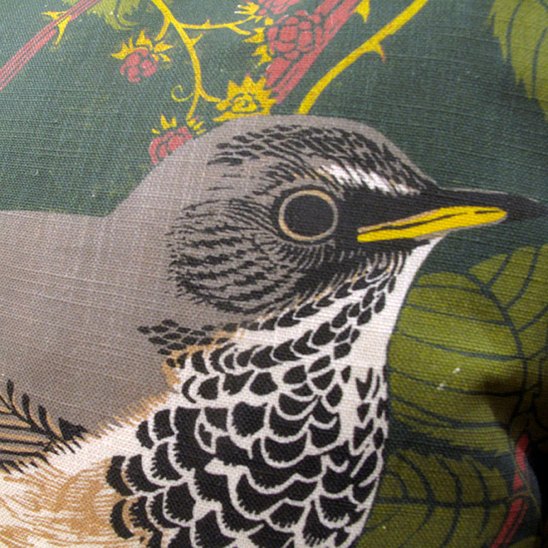 Black Throated Thrush Cushion