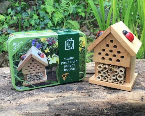 Make an Insect House