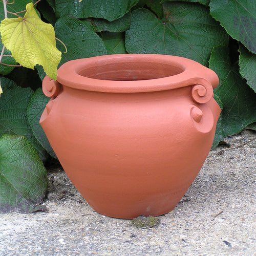 Scroll Pot 12 inches