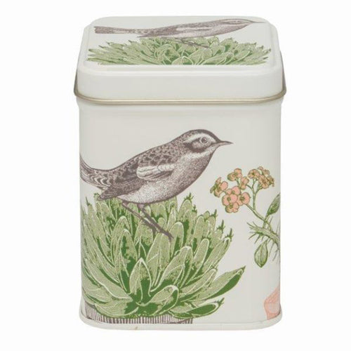 Cactus and Bird Tin with Tea