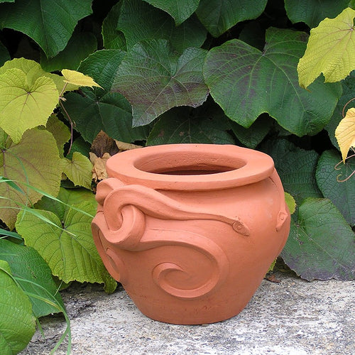 Snake Pot 10 inches