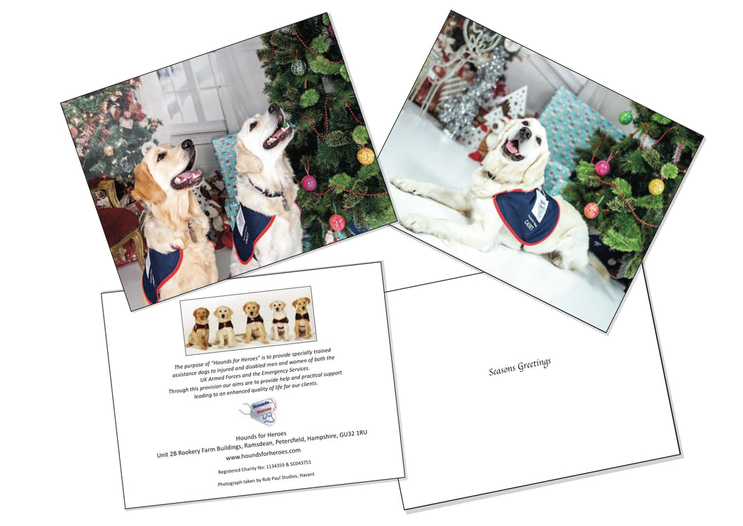 Christmas Cards - 'Poppy's second Christmas' and 'Wishing on a Star'
