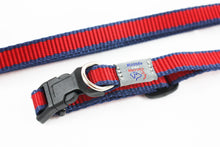 Collar & lead gift set - Small