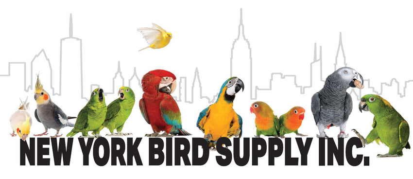New York Bird Supply
