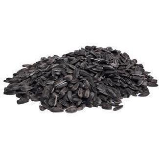 Black Oil Sunflower - New York Bird Supply