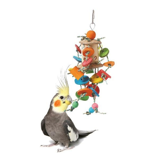 HARI Smart Play Coconut Merry Go Round - New York Bird Supply