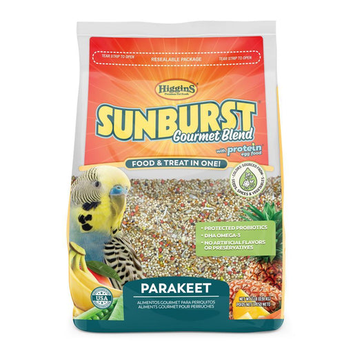 Higgins Sunburst Parakeet - New York Bird Supply