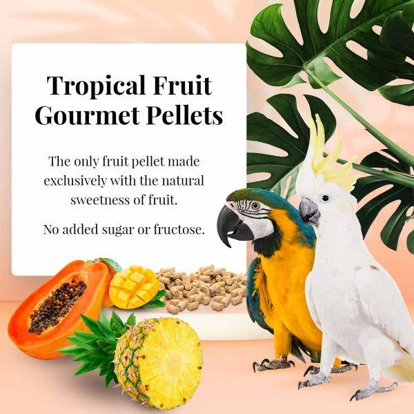 Lafeber Tropical Fruit Gourmet Pellets Macaw - New York Bird Supply