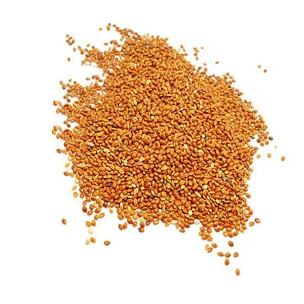 Siberian Millet 50 LB - New York Bird Supply