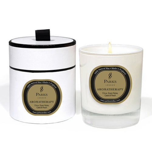 PARKS LONDON AROMATHERAPY 1 WICK CANDLE CHAMPAGNE