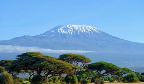 mount Kilimanjaro in Tanzania, Africa during daylight hours
