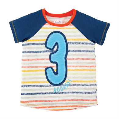 THREE Boys Birthday Shirt