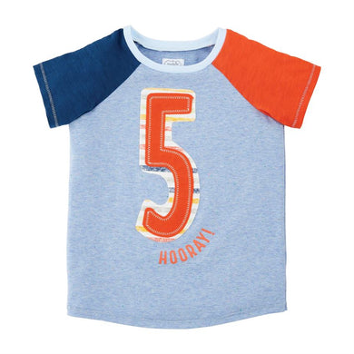 FIVE Boys Birthday Shirt