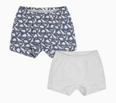 James - Boy's Boxer Brief Package (Set of 2) - White/Dinosaurs