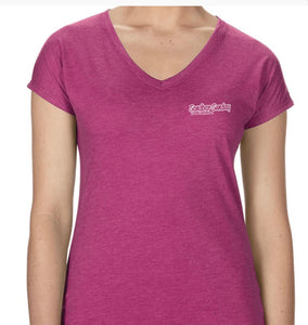 Sandbar Sunday (S.I) Ladies Triblend V-Neck Tee in Heather Raspberry/Sebastian Inlet
