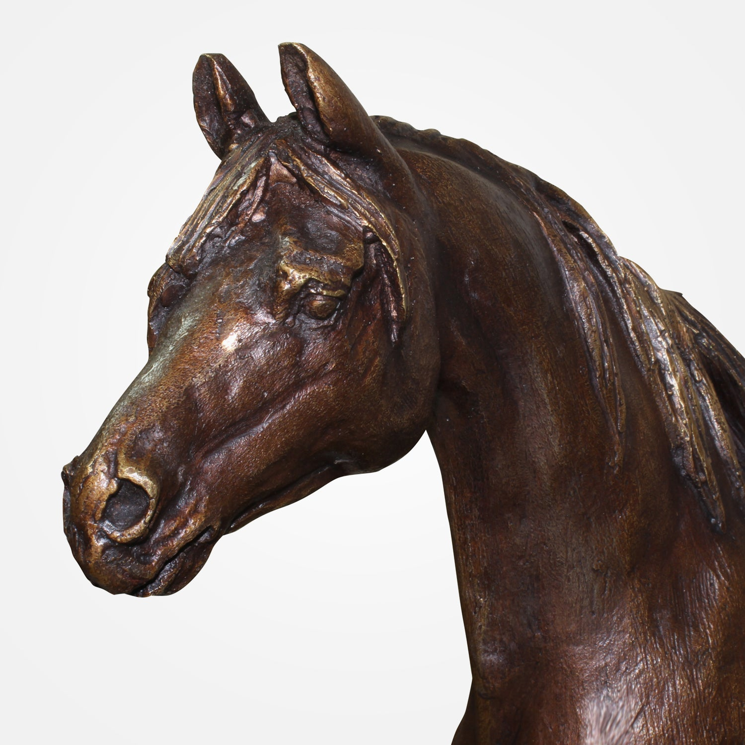 Majestic Horse Bronze Sculpture by Ebano