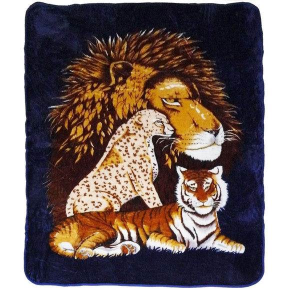 Blanket Queen Korean - Tiger Ct- Lion Tiger Cheetah Black