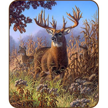Blanket 50x60 Throw  LZ-Deer Cornfield Flannel Sherpa
