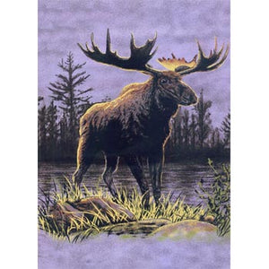 Blanket Queen TOR- Deer Ct- Moose G530