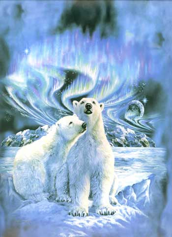 Blanket Queen Signature- Polar Bear Ct- Polar Bear Northern Lights