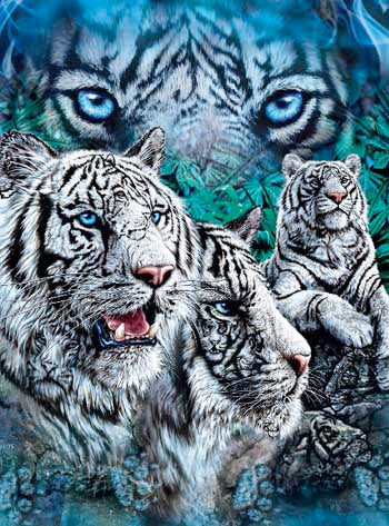 Blanket Queen Signature- Tiger Ct- 12 White Tigers